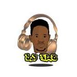 DJ FLO 5.1 - LATEST 228 AFROHIT & CLUB PARTY MIX